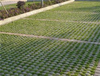 大足植草砖